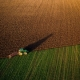 Übergangsfrist für Mindestlohn in der Landwirtschaft endet