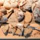 Nachwuchssorgen belasten Bäcker- und Fleischerhandwerk
